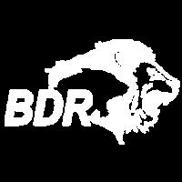 BDR - Bulat Pharmaceutical Client
